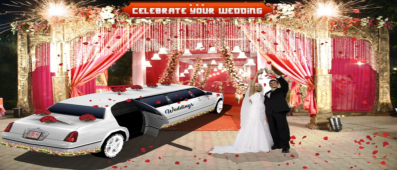 Luxury Wedding Limousin Car Game 3D